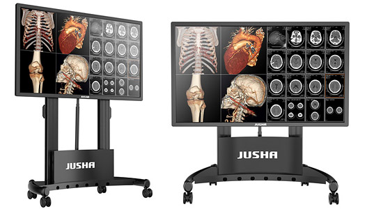 Medical Demonstration Display JUSHA-S8420